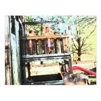 BACK YARD BUDDIES #3 POSTCARD