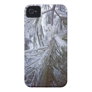 back yard ice storm iPhone 4 covers
