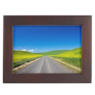 Backcountry road through Spring Canola Fields Memory Box
