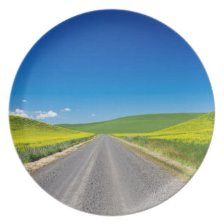 Backcountry road through Spring Canola Fields Plate