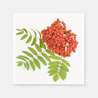 Background Of Berries Standard Cocktail Napkin