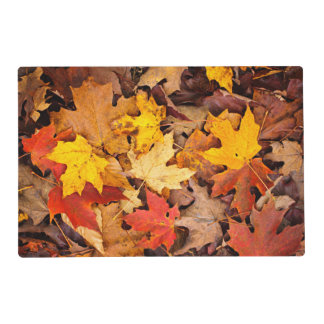 Background Of Colorful Autumn Leaves On Forest Placemat
