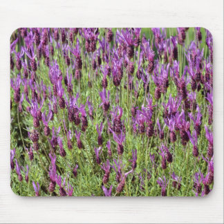 Background of lavender mouse pad