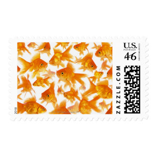 Background Showing a Large Group of Goldfish Postage