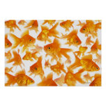 Background Showing a Large Group of Goldfish Posters