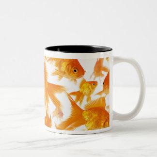 Background Showing a Large Group of Goldfish Two-Tone Coffee Mug