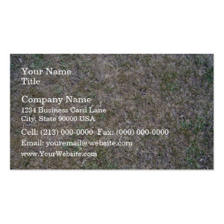 Background Texture of Dry Grass Double-Sided Standard Business Cards (Pack Of 100)