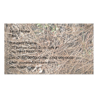 Background Texture of Dry Pine Leaves Business Card Templates