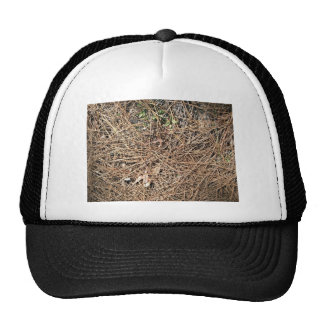 Background Texture of Dry Pine Leaves Trucker Hat