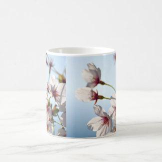 Backlit Cherry Blossoms Mug