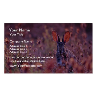 Backlit Cottontail Pink flowers Double-Sided Standard Business Cards (Pack Of 100)