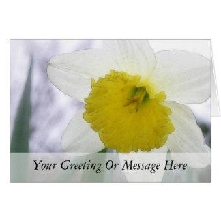 Backlit Daffodil Blossom Card