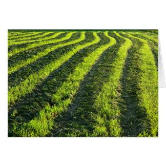 Backlit farmland card