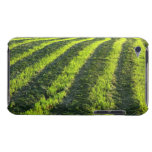 Backlit farmland iPod touch cases