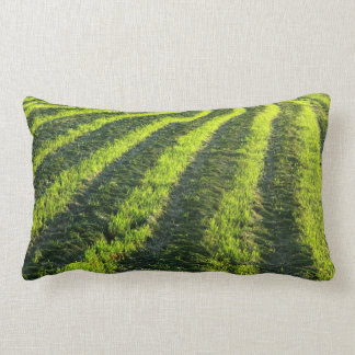 Backlit farmland throw pillows