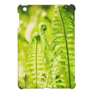 Backlit Fern Cover For The iPad Mini