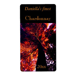 Backlit tall old tree wine label