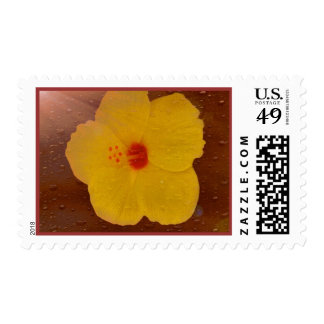 Backlit Yellow Floral Postage
