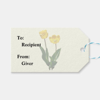 Backlit Yellow Tulips Gift Tags