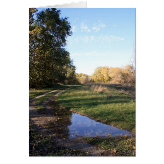 Backroads Reflection Note Cards