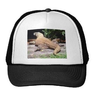 Backside of komodo dragon trucker hat