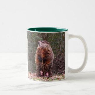 Backyard Beaver Mug
