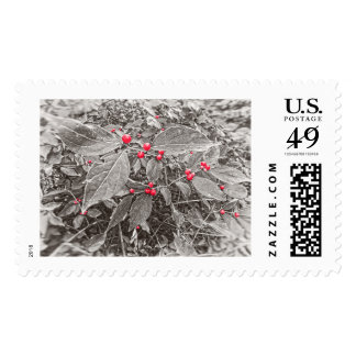 Backyard Berries and Leaves, Black and White Postage