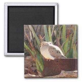 Backyard Birds 2 Inch Square Magnet