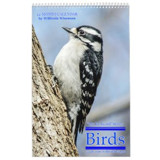 Backyard Birds Calendar 4th in Series