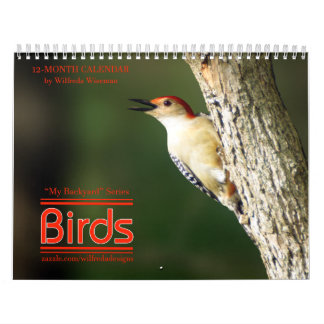 Backyard Birds Calendar Woodpecker Cover
