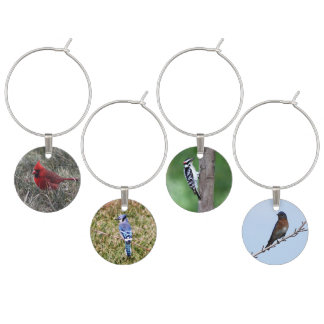 Backyard Birds Wine Charms