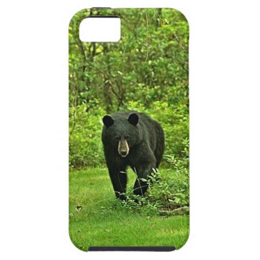 Backyard Black Bear iPhone SE/5/5s Case