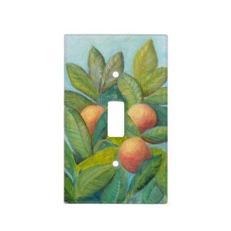 BACKYARD FLORIDA ORANGES Light Switch Cover