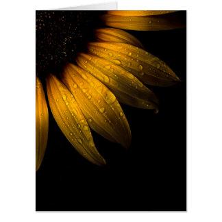 Backyard Flowers 28 Sunflower Card