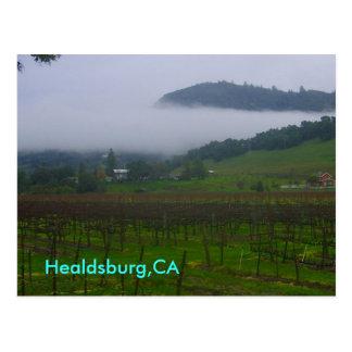 backyard, Healdsburg,CA Postcard