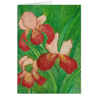 Backyard Iris Note Card