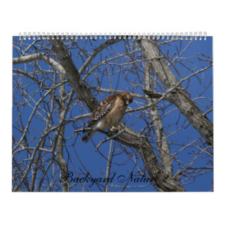 Backyard Nature 2, Calendar