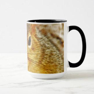 Backyard Squirrel Coffee Mugs