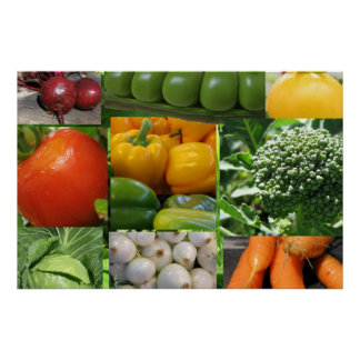Backyard Vegetable Garden Poster