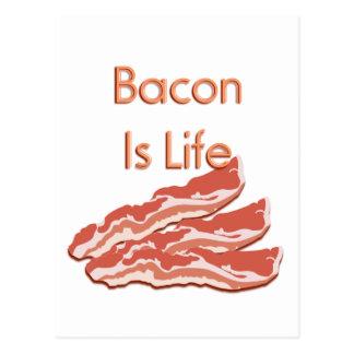 Bacon Is Life Postcard