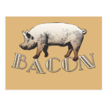 Bacon LOVE Postcard