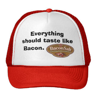 Bacon Salt Hat - Logo / Everything should taste li