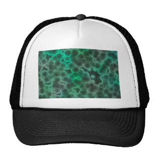 Bacteria Trucker Hat