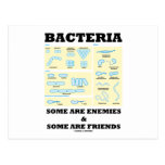 Bacteria Some Are Enemies & Some Are Friends Post Cards