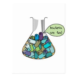 Bacterial Culture Postcard
