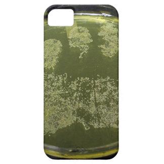 Bacterias de la placa de Petri de la mano Funda Para iPhone SE/5/5s