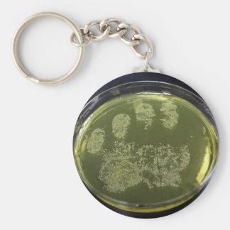Bacterias de la placa de Petri de la mano Llavero Redondo Tipo Pin