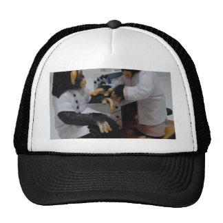 Bacteriologist Trucker Hat