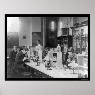 Bacteriology Lab at Howard Univiversity 1900 Poster
