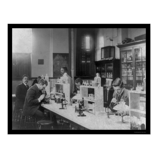 Bacteriology Lab at Howard Univiversity 1900 Poster